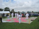 Carnival 2014  Karate demonstration on the field.
